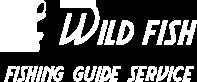wild fish(ワイルドフィッシュ)